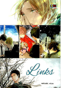 Copertina LINKS n. - LINKS, FLASHBOOK