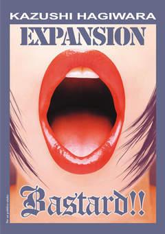 Copertina HENTAI VM 18 n. - BASTARD!! EXPANSION, RONIN MANGA
