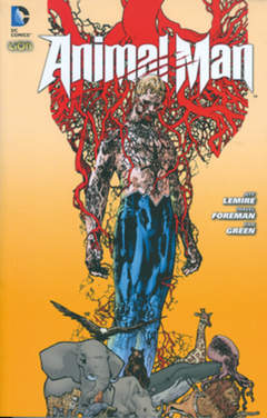 Copertina ANIMAL MAN n.1 - DC DARK 1, RW LION