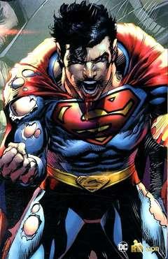 Copertina BATMAN/SUPERMAN Slipcase n. - SUPERMAN: L'ARRIVO DEI SUPERMAN/BATMAN ODISSEY, RW LION
